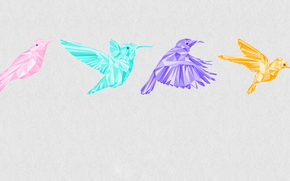 colibri, COLOR, graphics, bird, FRAME, flight
