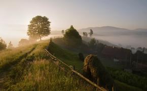 fog, morning, village, Carpathians, summer
