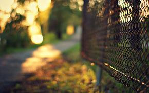боке, сетка, забор, ограда, металлическая, размытость, трава, деревья, вечер