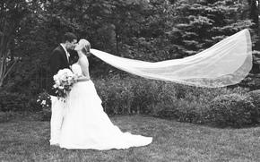 terno, noiva, Amor, sentimento, v?u, dois, beijar, grama, noivo, vestir