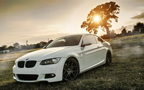 tuning, BMW, Blanc, domaine, Lecteurs, BMW, compartiment, herbe