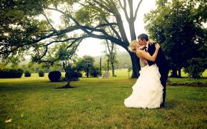 bacio, Bianco, tuta, albero, ragazzo, ragazza, sposo, sposa, vestire, erba, verdi