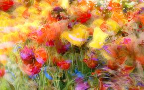 性质, 郁金香, 渲染, 草地, 罂粟, 场, 花卉