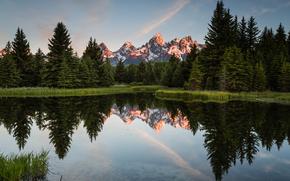 Parc national de Grand Teton, lac, Montagnes, arbres, paysage