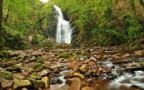 pequeño río, cascada, piedras, árboles, naturaleza