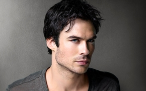 Ian Somerhalder, acteur, Série TV, Damon Salvatore, The Vampire Diaries, homme, Gris, Brunet, fond