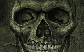 STRUTTURA, crepe, cranio