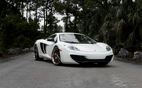road, white, McLaren, Front, sky, trees, Supercars