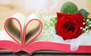 книга, золотые, обручальные кольца, свадьба, роза