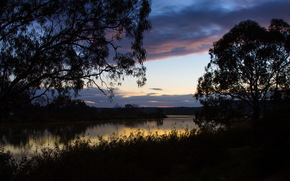 morning, river, clouds, Australia, grass, trees, reflection, shore, DAWN, sky