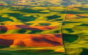 USA, Hills, field, nature, carpets, valley