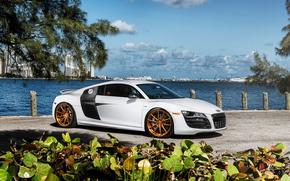 Audi, ауди, автообои