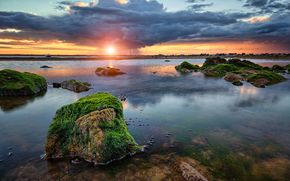 bay, stones, ALGAE, clouds, rain, sunset