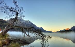 nebbia, paesaggio, lago