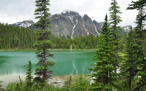 Lake Edith Cavell, Parco nazionale Jasper, lago, Montagne, paesaggio