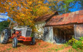 autunno, alberi, domestico, fienile, trattore, paesaggio