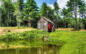 Vermont, Nuova Inghilterra, foresta, mulino, pond, paesaggio