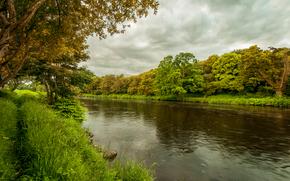 fiume, alberi, NUVOLE, paesaggio