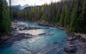Banff National Forest, Alberta, Canada