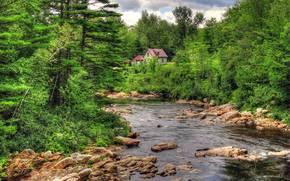 river, forest, trees, stones, cabin, landscape