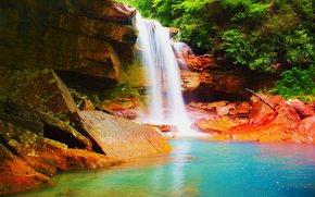 cachoeira, Rochas, floresta, árvores, natureza