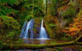 водопад, лес, деревья, природа