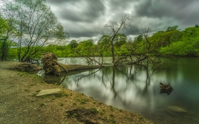 river, trees, CLOUDS, landscape