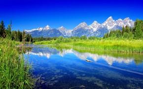 Góry, rzeka, drzew, krajobraz