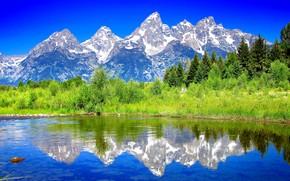 Montañas, río, árboles, paisaje
