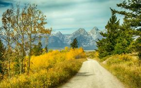 road, autumn, Mountains, trees, landscape