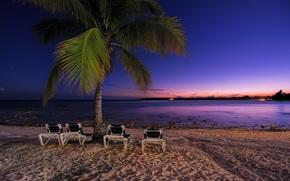 закат, море, пляж, пальма, Mexico, пейзаж