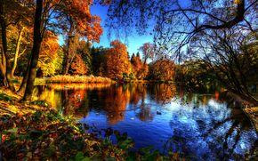 Royal Baths Park, Warsawa, пейзаж