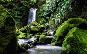 waterfall, stones, moss, nature