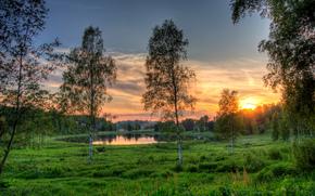 tramonto, lago, alberi, Estonia, paesaggio