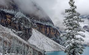 Moraine, Parc national Banff, Canada, lac, arbres, paysage