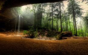 foresta, alberi, nebbia, Rocce, cascata, natura, paesaggio