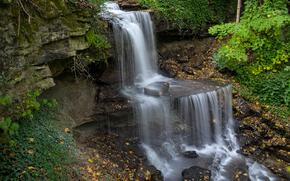 森林, 秋, 岩石, 瀑布, 级联, 树, 性质