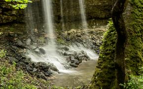 滝, 岩, 木, 自然
