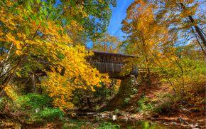 fiume, autunno, ponte, alberi, paesaggio