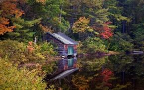 озеро, лес, деревья, осень, домик, пейзаж