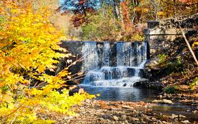 autunno, cascata, piccolo fiume, alberi, natura