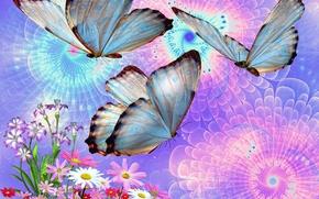 бабочки, цветы, 3d, art