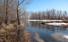 природа, весна, ранняя весна, апрель, талый, лужа, електы, кокшетау, лесополоса, таяние, снег