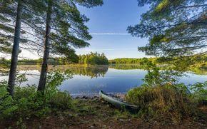 湖, 木, 岸, ボート, 風景