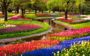Парк, Ёёги, Тюльпаны, Пруд, Деревья, Природа, Цветы, Япония, Токио, Сибуя, Yoyogi, Tokyo, Japan