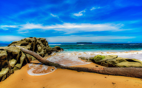 mare, puntellare, Rocce, albero caduto, paesaggio