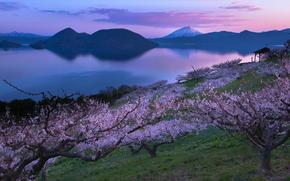 озеро, сад, вулкан, сакура, япония, Japan, пейзаж