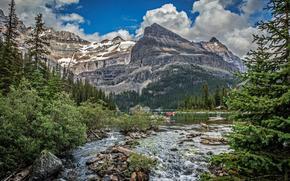 горы, река, деревья, камни, природа