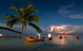 tempesta, Imbarcazione, palma, Thailandia