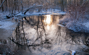 winter, sunset, river, trees, forest, nature